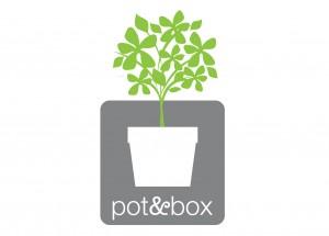 Pot & Box